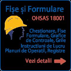 Documentatie OHSAS 18001 Formulare